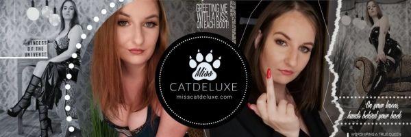 Miss Cat Deluxe
